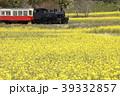 小湊鐵道 春 菜の花の写真 39332857