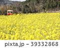 小湊鐵道 春 菜の花の写真 39332868