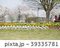 百年公園の桜1 39335781