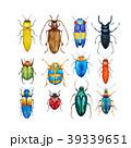 ビートル 甲虫 カブト虫のイラスト 39339651