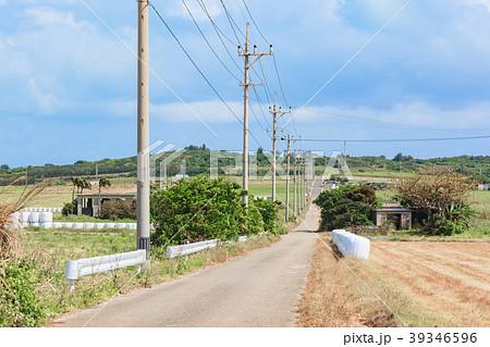 シュガーロード 小浜島 39346596
