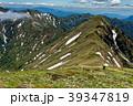 ハクサンイチゲ咲く谷川連峰・仙ノ倉山から主稜線を望む 39347819