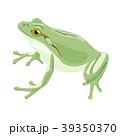カエル 39350370