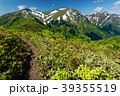 山 新緑 大源太山の写真 39355519
