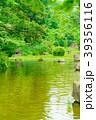 庭園 庭 池の写真 39356116