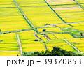 農村 田園風景 田んぼの写真 39370853