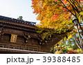 高尾山薬王院 山門 紅葉の写真 39388485