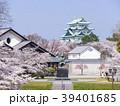 春 桜 名古屋城の写真 39401685