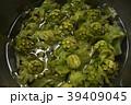 フキノトウ ふきのとう 蕗の薹 山菜 旬 春 植物 食材 山 山の幸 食べ物 フード 日本 39409045