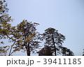 金沢城 青空に鷹 39411185