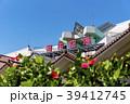 沖縄県 宮古島 宮古空港 39412745
