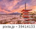 日本 季節 春の写真 39414133