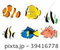 熱帯魚6種  39416778