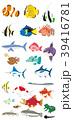 熱帯魚と海の魚と淡水の動物 39416781