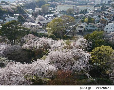 小田原城からの眺望(日本100名城) 39420021