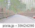 嵐山竹林の小径 39424290