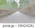嵐山竹林の小径 39424291