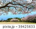 桜 花 満開の写真 39425633