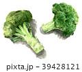 白背景 野菜 水彩のイラスト 39428121