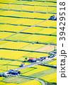 農村 田園風景 田んぼの写真 39429518