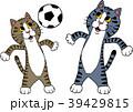 サッカー フットボール サッカーボールのイラスト 39429815