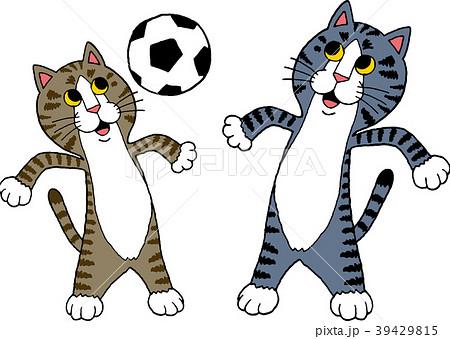 サッカーをする猫 39429815