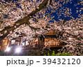 祇園白川 夜桜 桜の写真 39432120