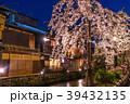 祇園白川 夜桜 桜の写真 39432135
