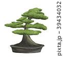 盆栽 樹木 樹のイラスト 39434032