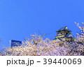 大阪城 夜桜 ライトアップの写真 39440069
