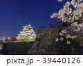 大阪城 夜桜 ライトアップの写真 39440126