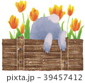 花壇に隠れるウサギ 39457412