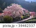 高知県仁淀川町上久喜の春風景 39462337