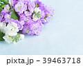 ストックの花束 39463718