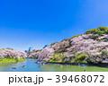 東京 千鳥ヶ淵の桜(展望台より) 39468072