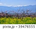 南アルプス 北岳 間ノ岳の写真 39476555