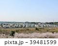 春 桜 ソメイヨシノの写真 39481599