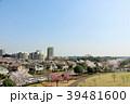 青空 桜 公園の写真 39481600