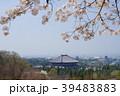 桜の下の東大寺2 39483883