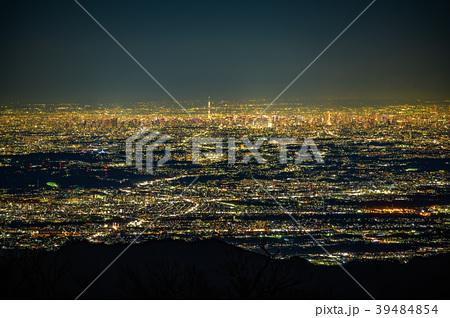丹沢不動ノ峰から見た東京都心の夜景(神奈川県丹沢不動ノ峰) 39484854