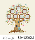 樹木 樹 ツリーのイラスト 39485028