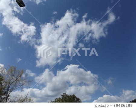 草野水路脇の道路からの青空とと白い雲 39486299