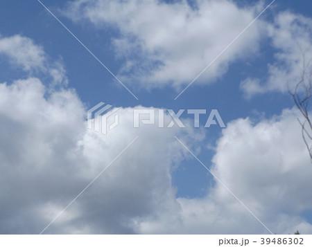 草野水路脇の道路からの青空とと白い雲 39486302