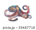 Octopus. Hand drawn illustration in watercolor 39487716