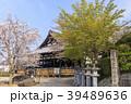 安倍文殊院 寺院 春の写真 39489636
