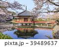 安倍文殊院 寺院 春の写真 39489637