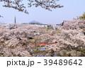 安倍文殊院 寺院 春の写真 39489642