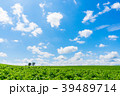 【北海道】自然イメージ 39489714