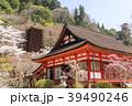 談山神社の桜 39490246