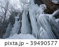 奥入瀬渓流の冬 馬門岩 氷瀑・氷柱 39490577